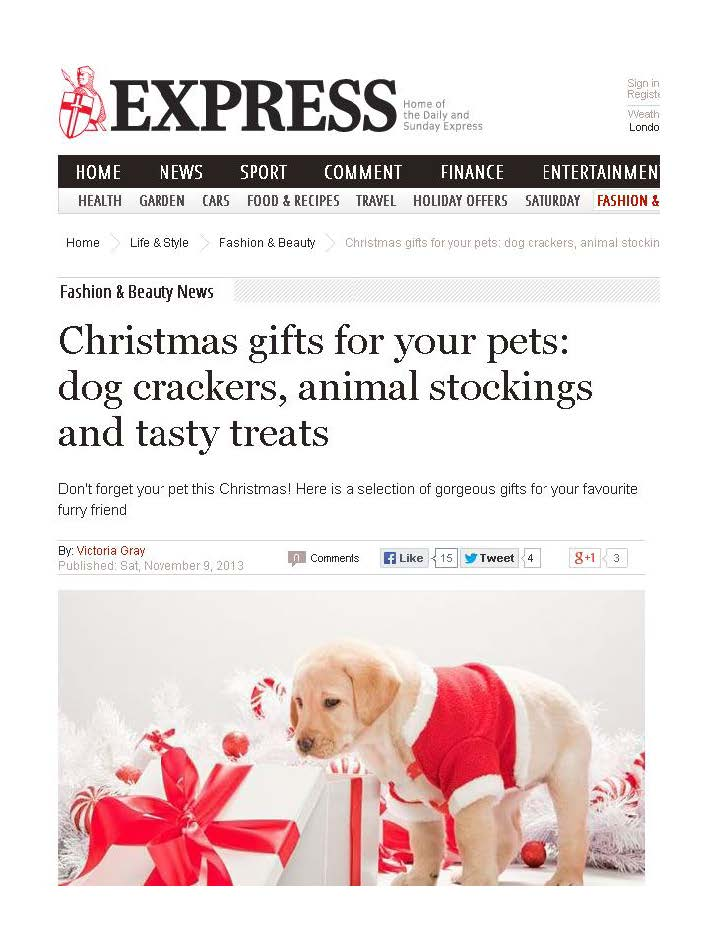 dog, dogs, style, magazine, press, editorial, express, christmas