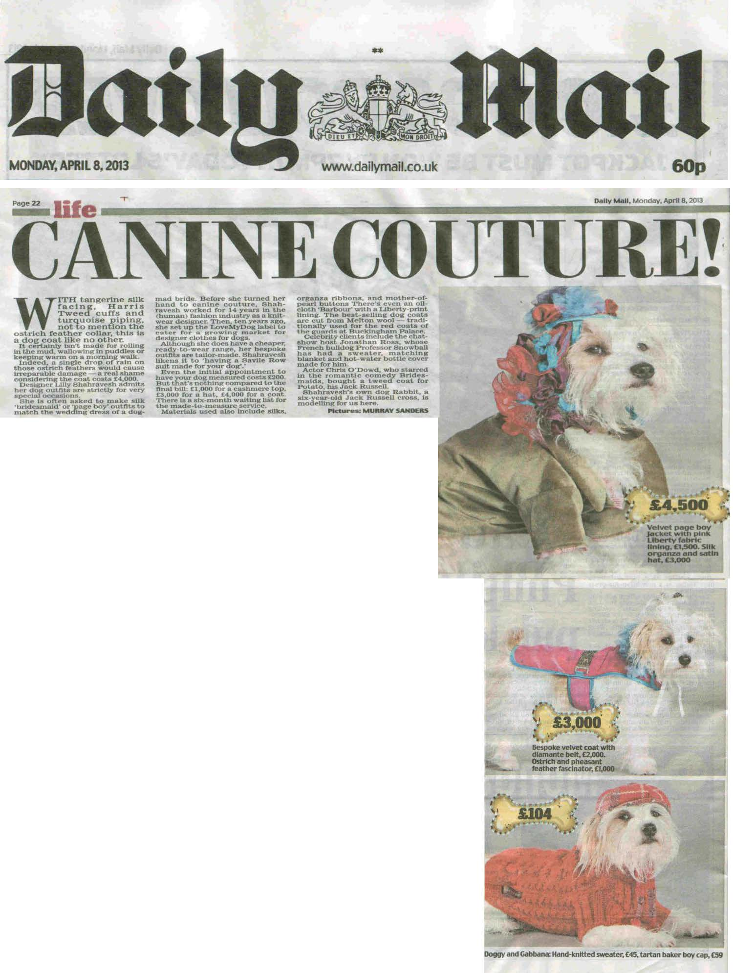 dog, dogs, style, magazine, press, editorial, daily mail, dog, canine, couture