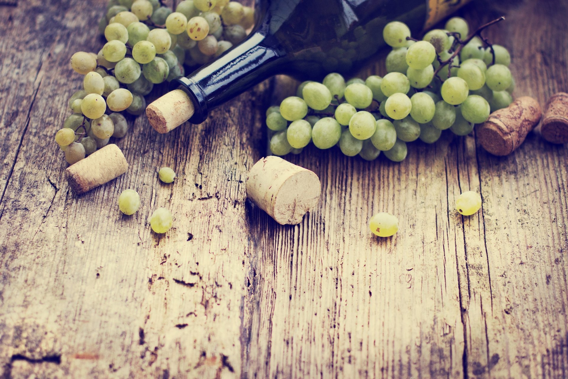 Kurasi Wines Eshop