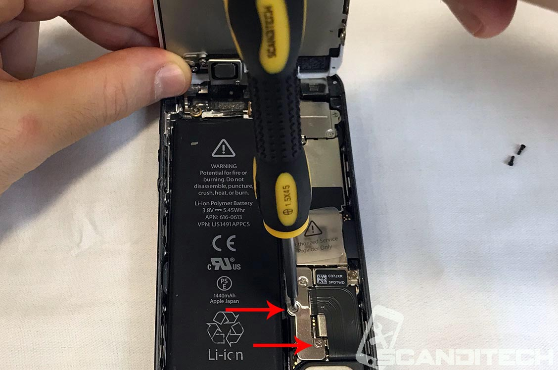 Remove the two Phillips screws.