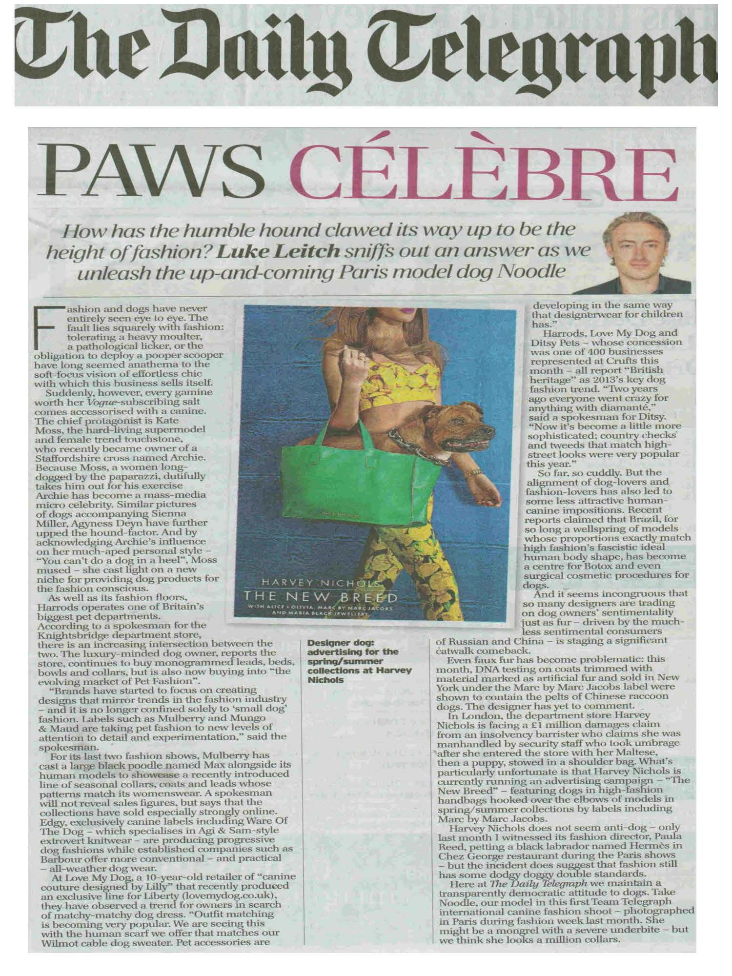 dog, dogs, style, magazine, press, editorial, daily telegraph, paw, celebrity