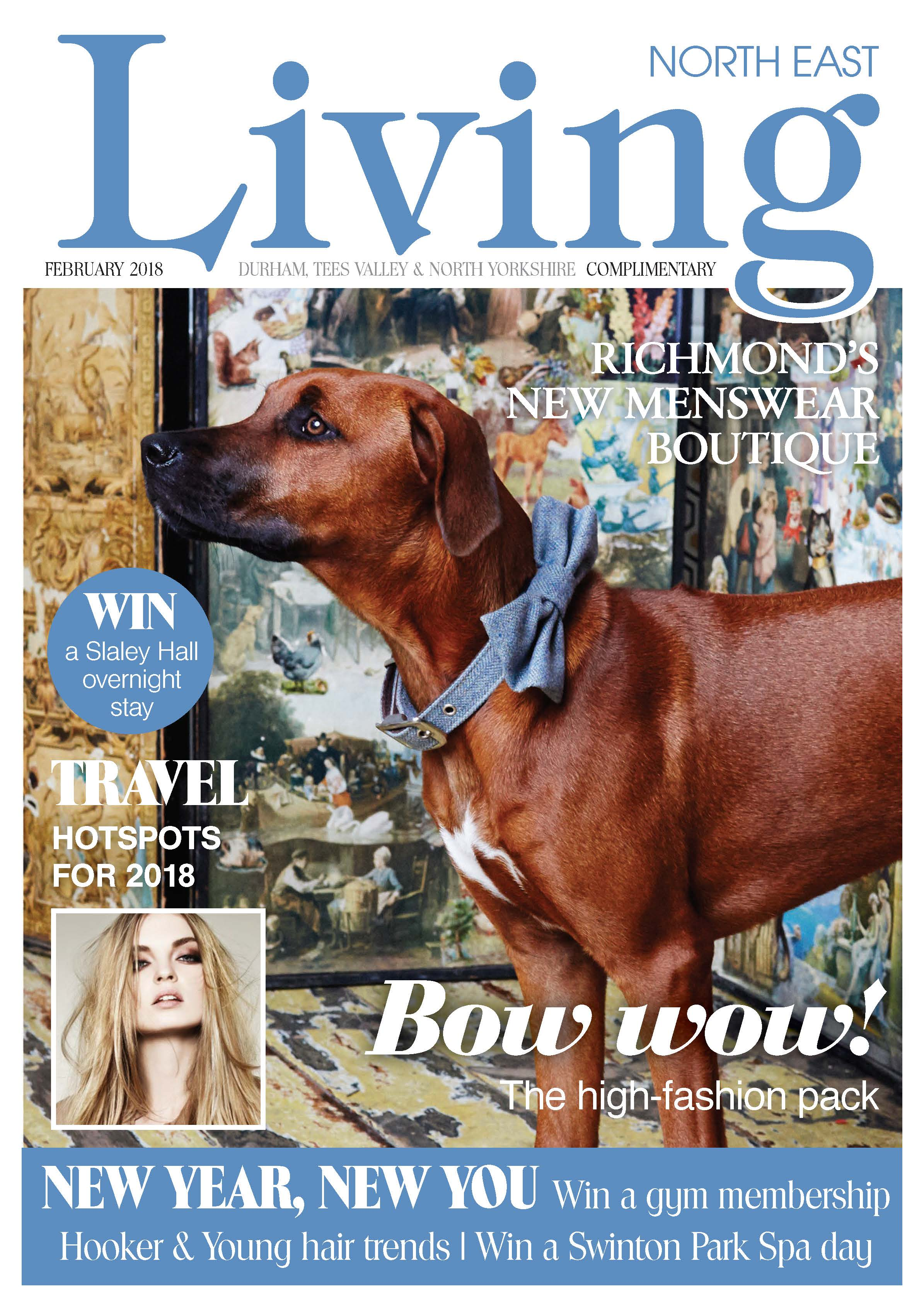 dog, dogs, style, magazine, press, editorial, northeast, living, bowtie