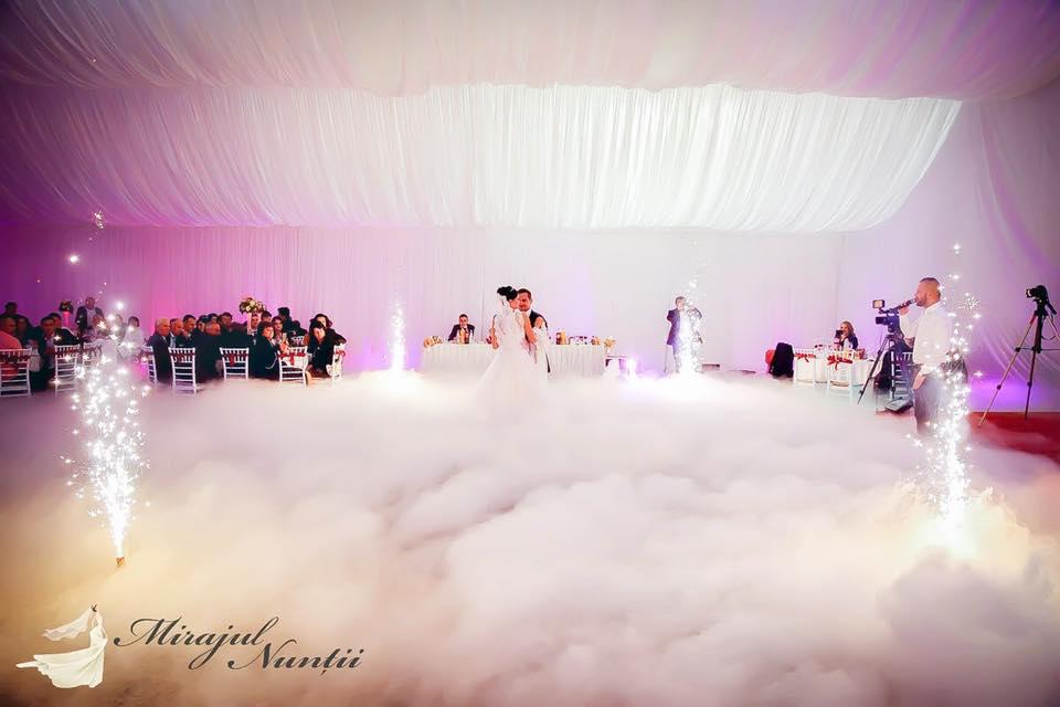 gheata carbonica la nunta