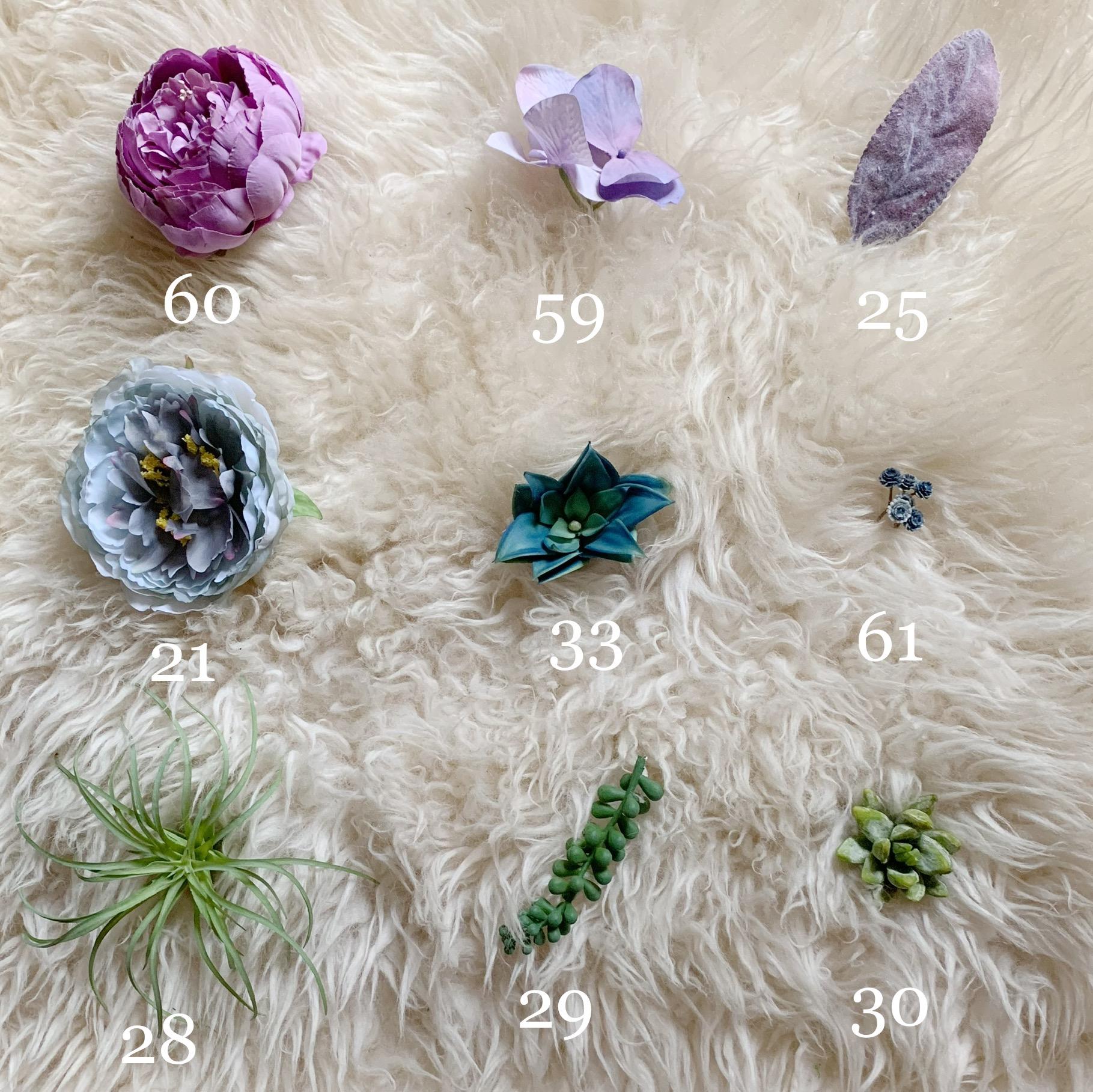 purple blue succulent flower options
