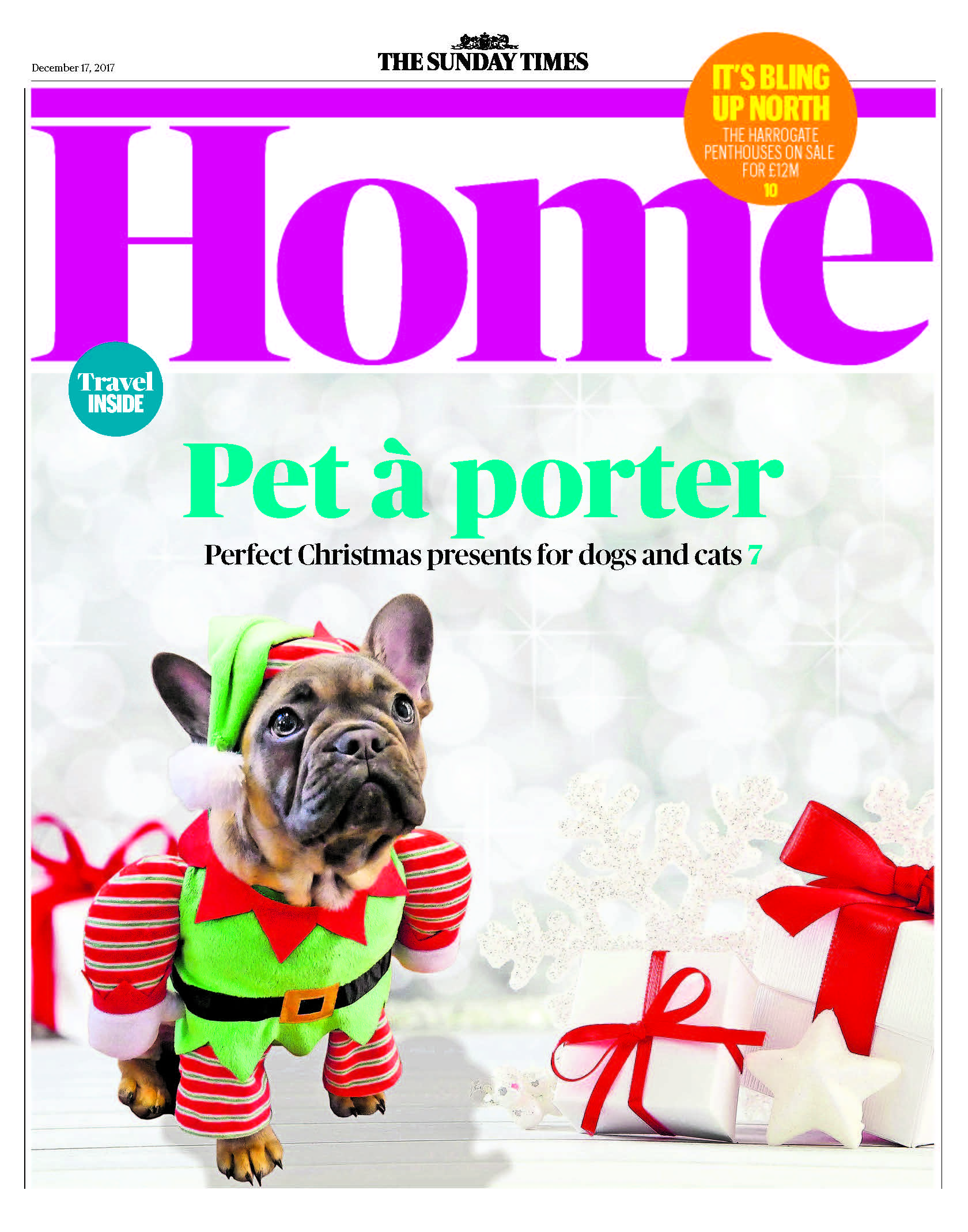 dog, dogs, style, magazine, press, editorial, home, sunday times