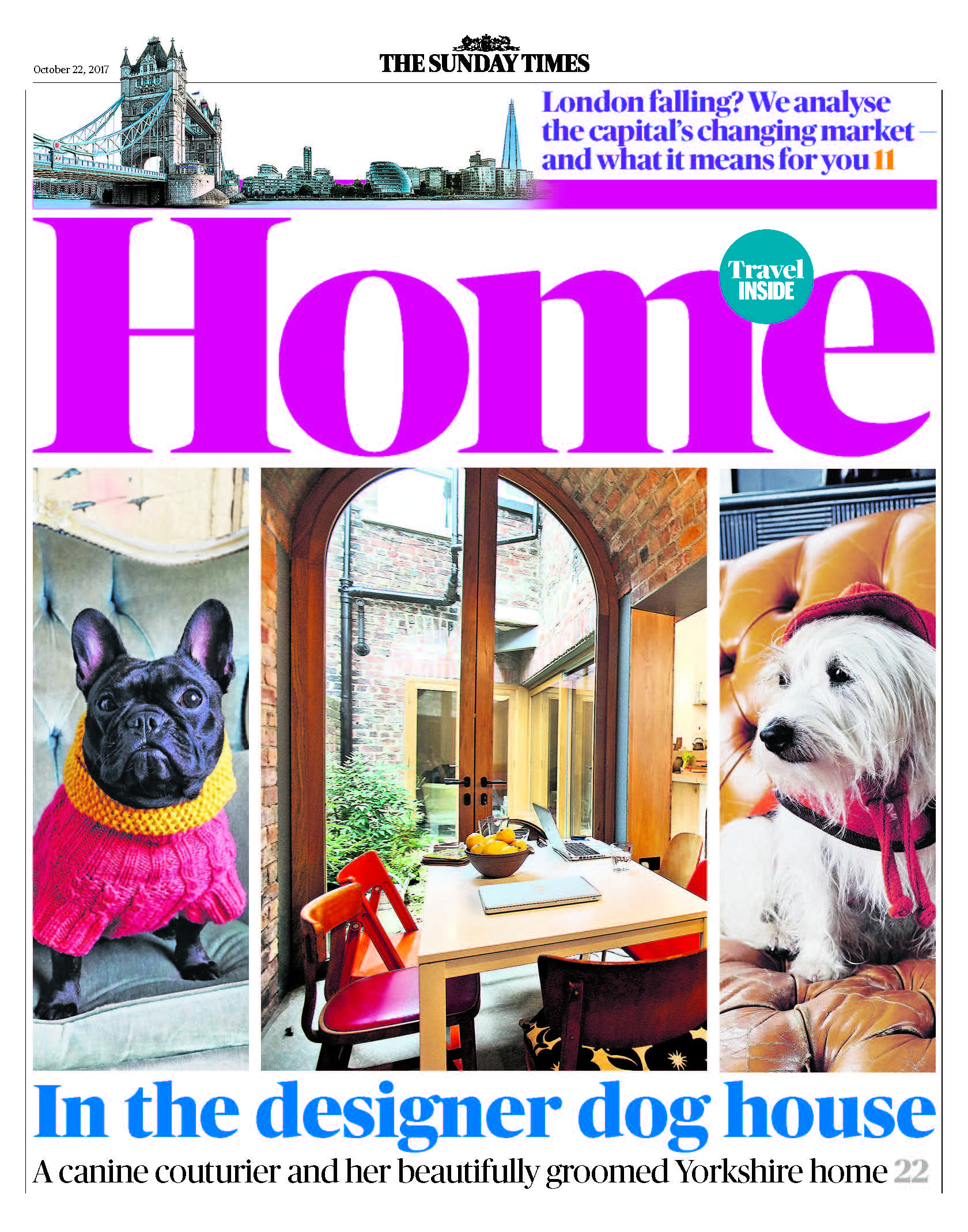 dog, dogs, style, magazine, press, editorial, home, designer, dog, house