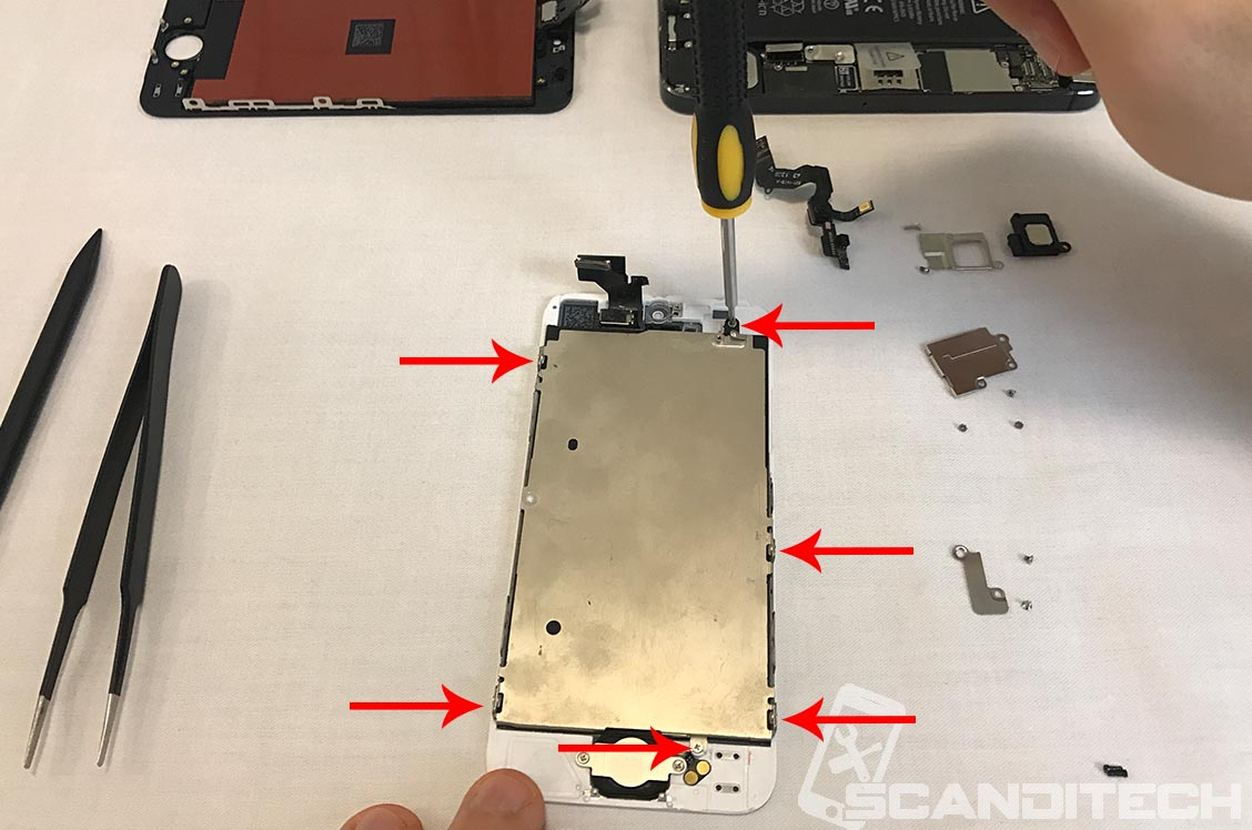 Identify the six screws holding the LCD shield.