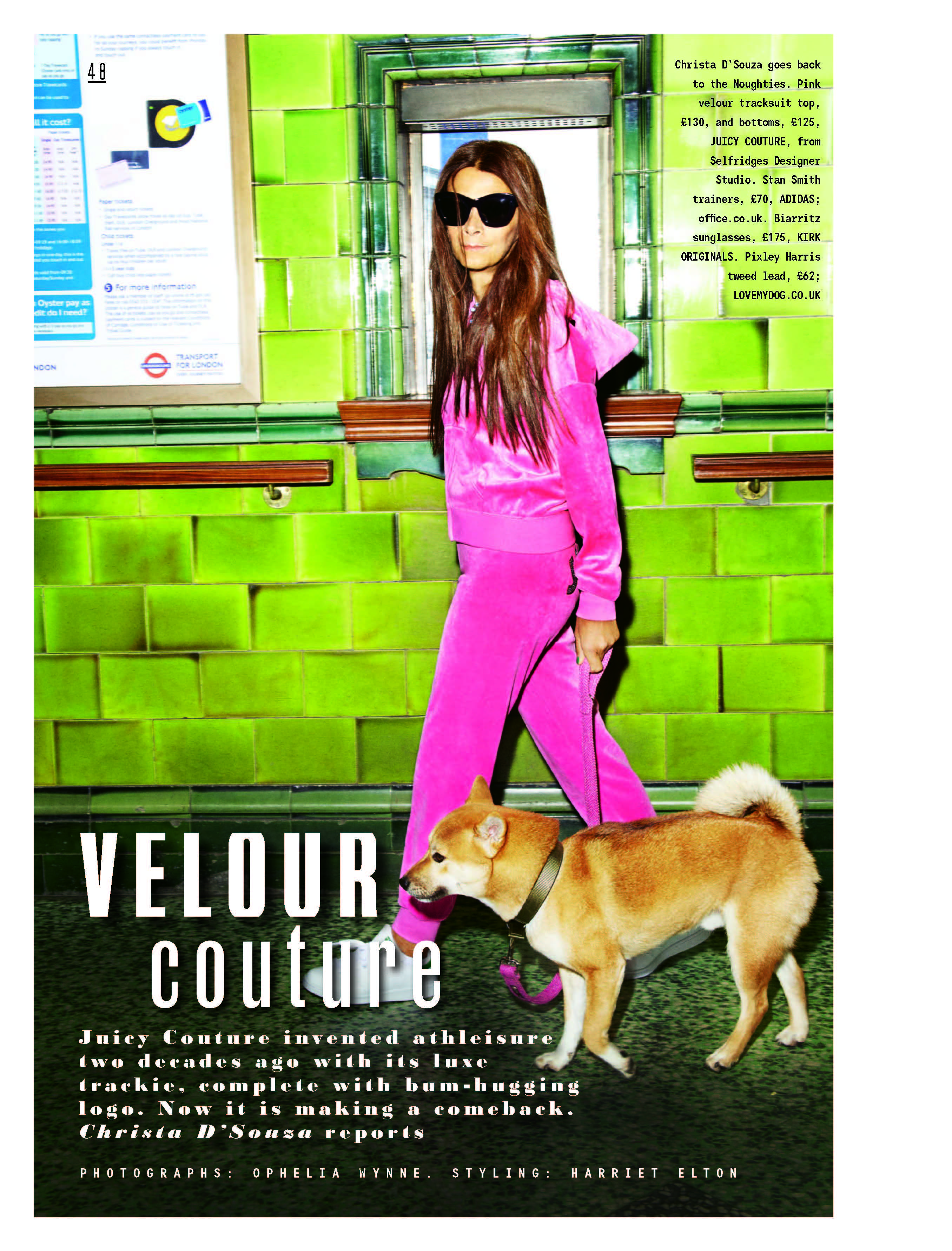 dog, dogs, style, magazine, press, editorial, couture, velour
