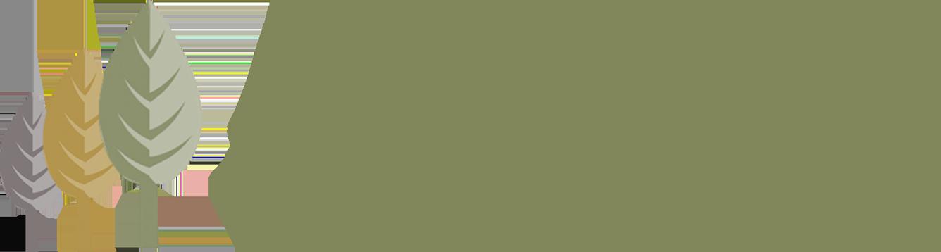 Aspire Sustainability logo