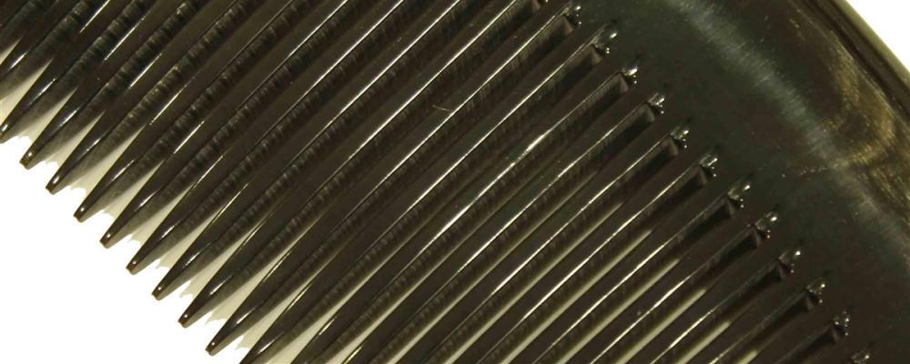 close up of comb teeth