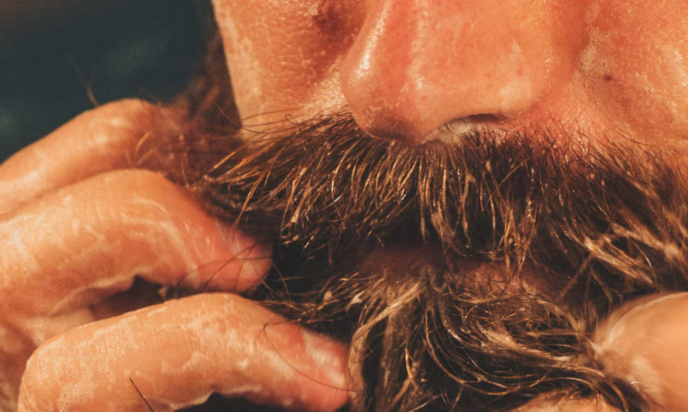 Image result for how to apply beard oil beardo