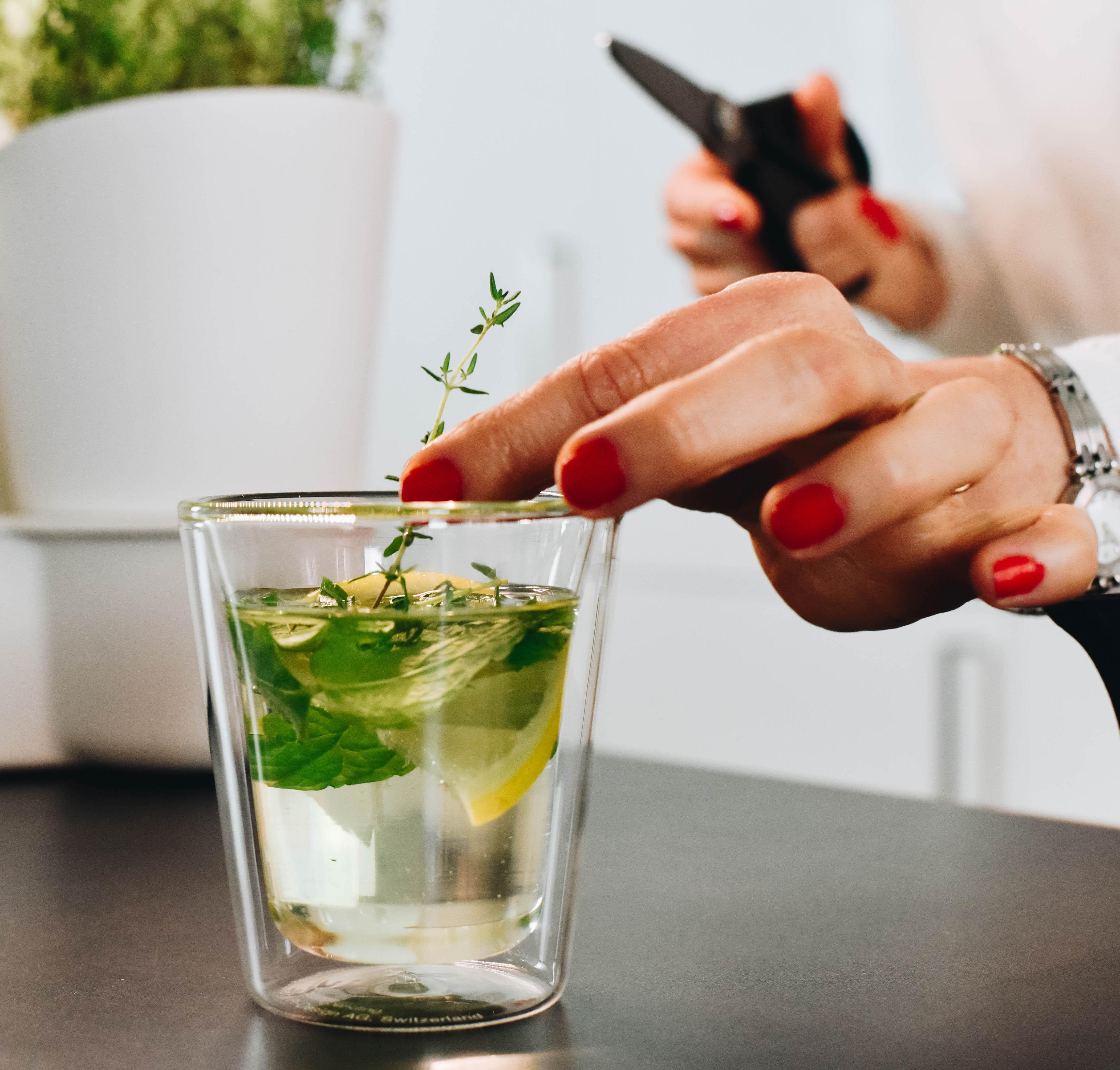 terra calla smart fresh herb indoor garden. Black Bedroom Furniture Sets. Home Design Ideas