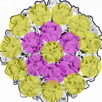 Mixed Rose Design