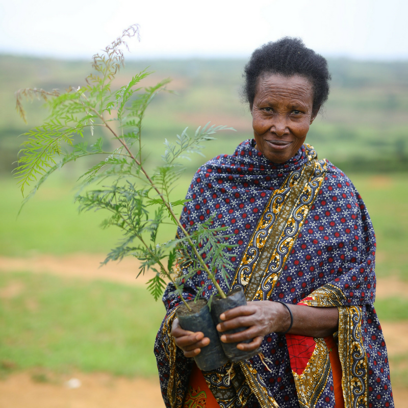 Rwanda Women's Coop