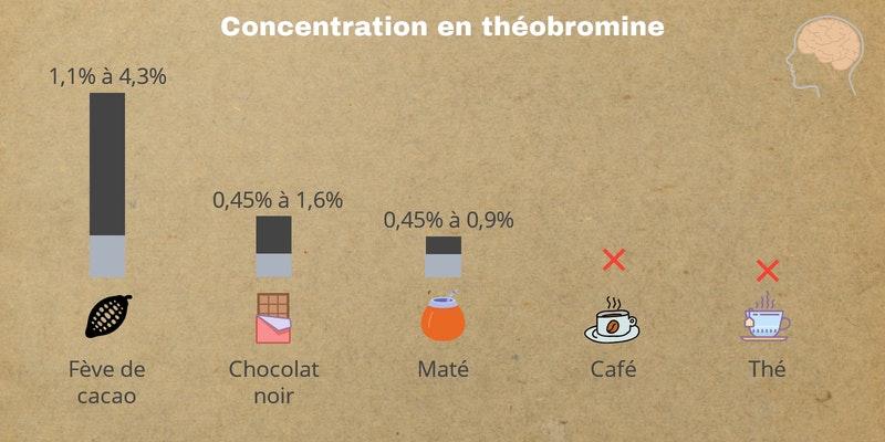Quantité de caféine dans le café, le maté, le red bull, le matcha et le thé vert