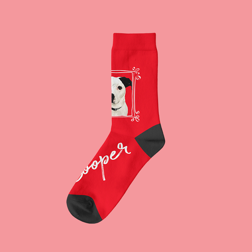 Custom printed socks with dog photo on them