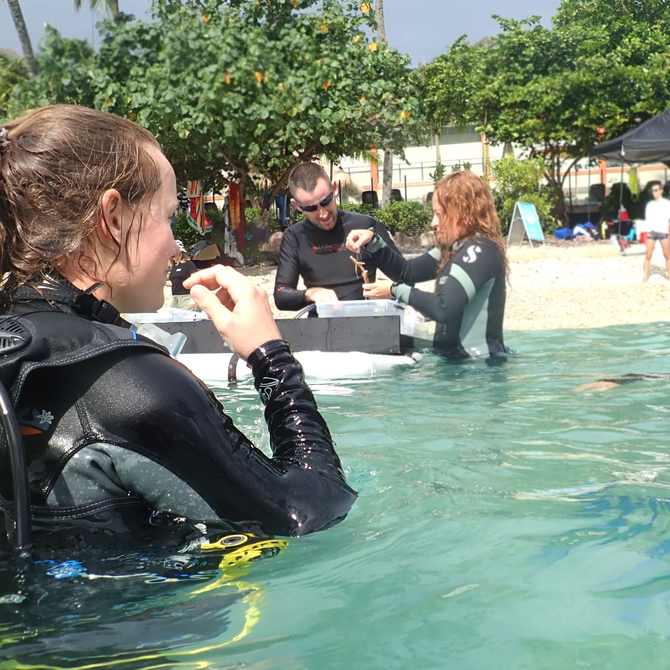 Divers with Coral Table