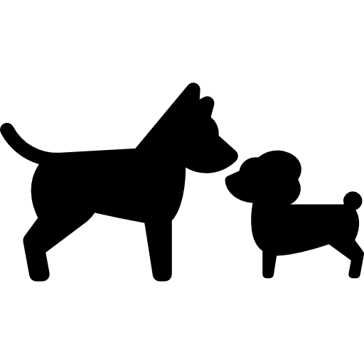Hudson Dog Training