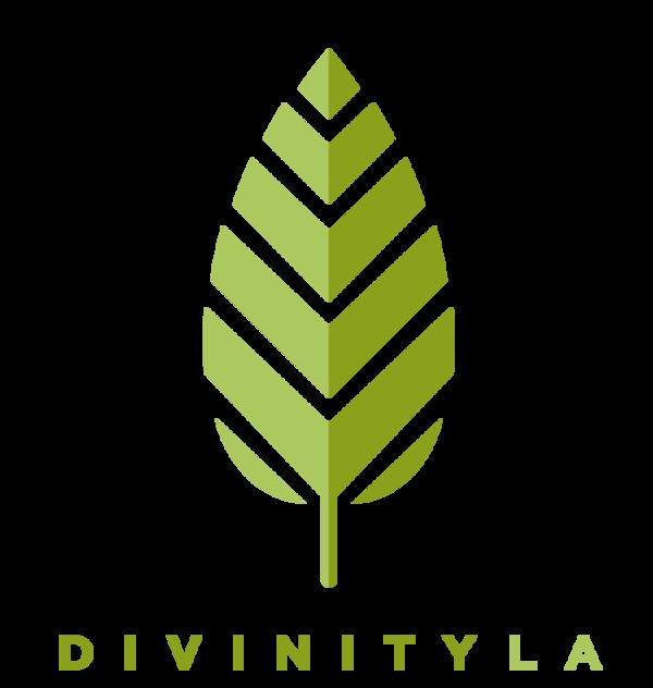 Divinity LA logo