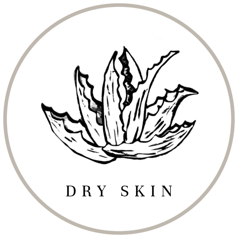 Natural Ingredients best for dry skin in non-toxic skincare