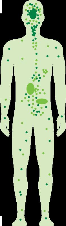 cbd effects on body