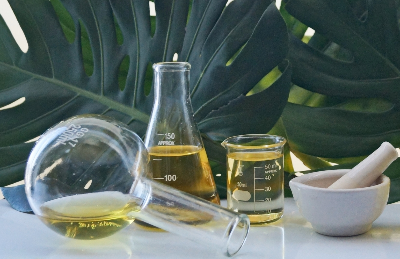 natural non-toxic clean grean beauty using Ayurveda