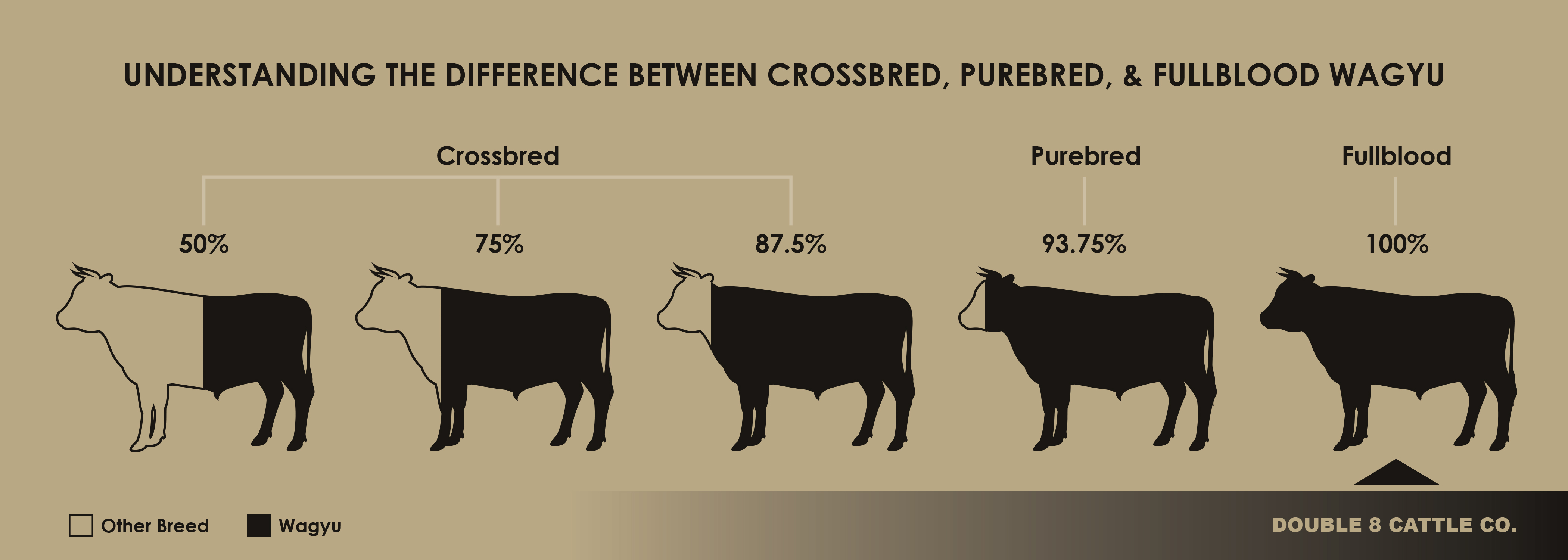 Difference between crossbred, purebred and fullblood wagyu