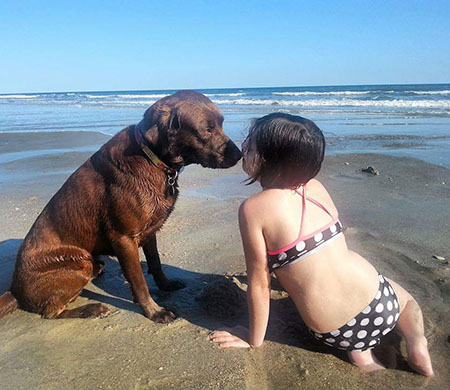 Goose Beach