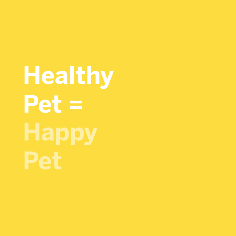 healthy pet, happy pet, oral care for dogs