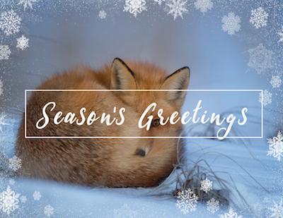 Eco Friendly Holiday Card