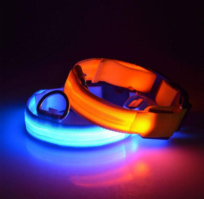 glowinglightuplednyloncollar