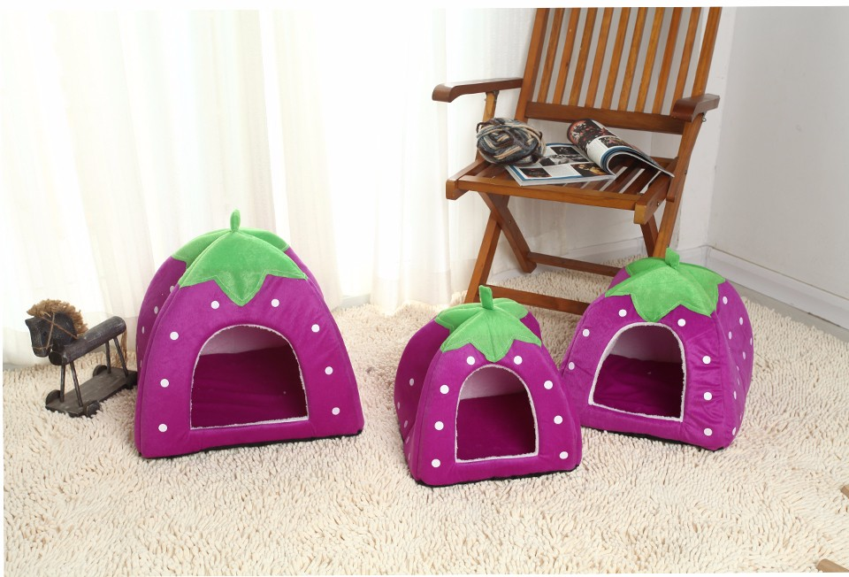 softstrawberrydogkennel