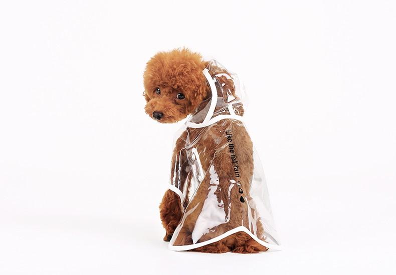 cleardograincoat