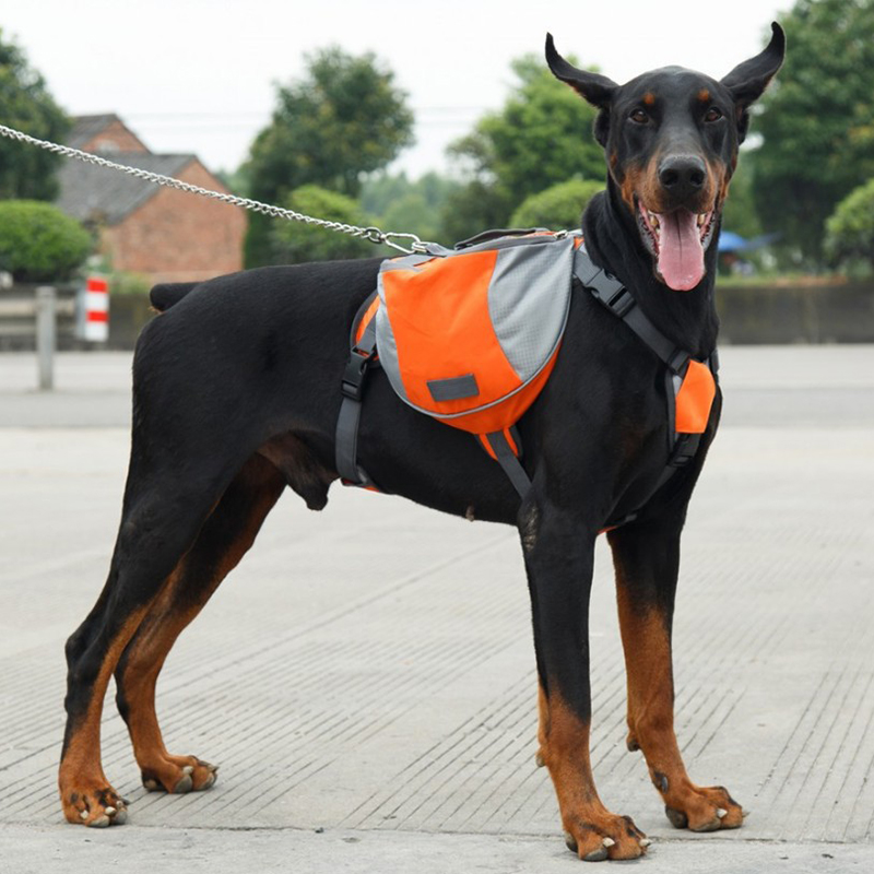 outdoorsdogharnessbackpack