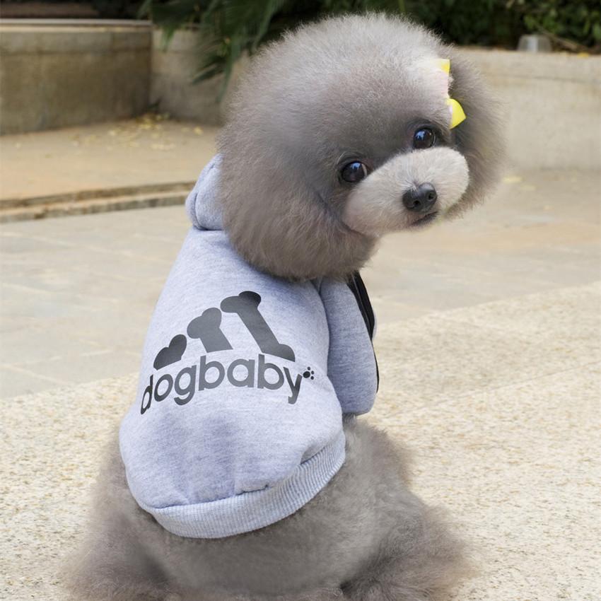graydogbabyhoodie