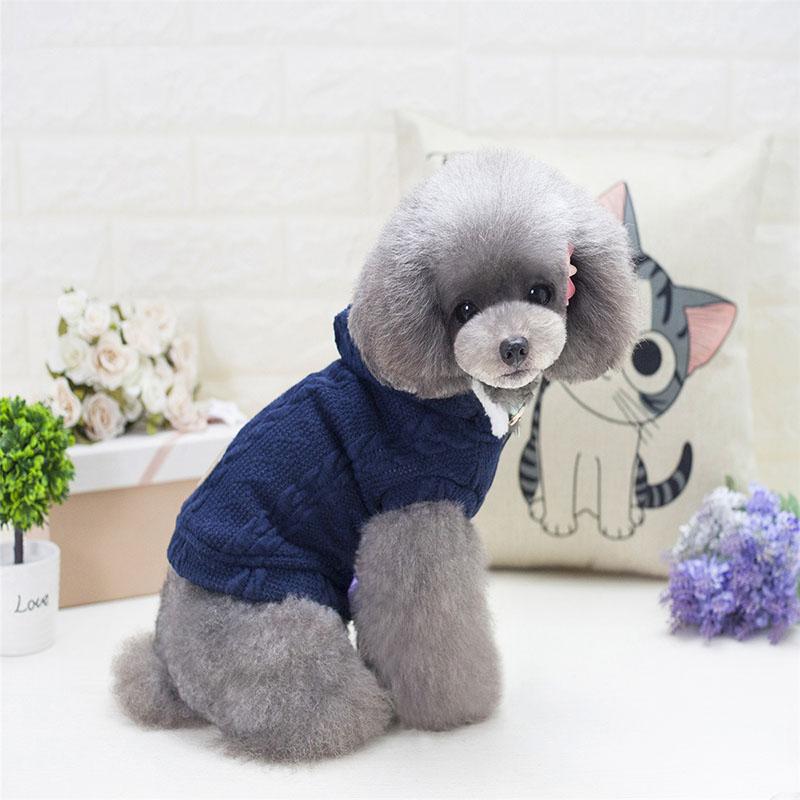 strawropedogsweater