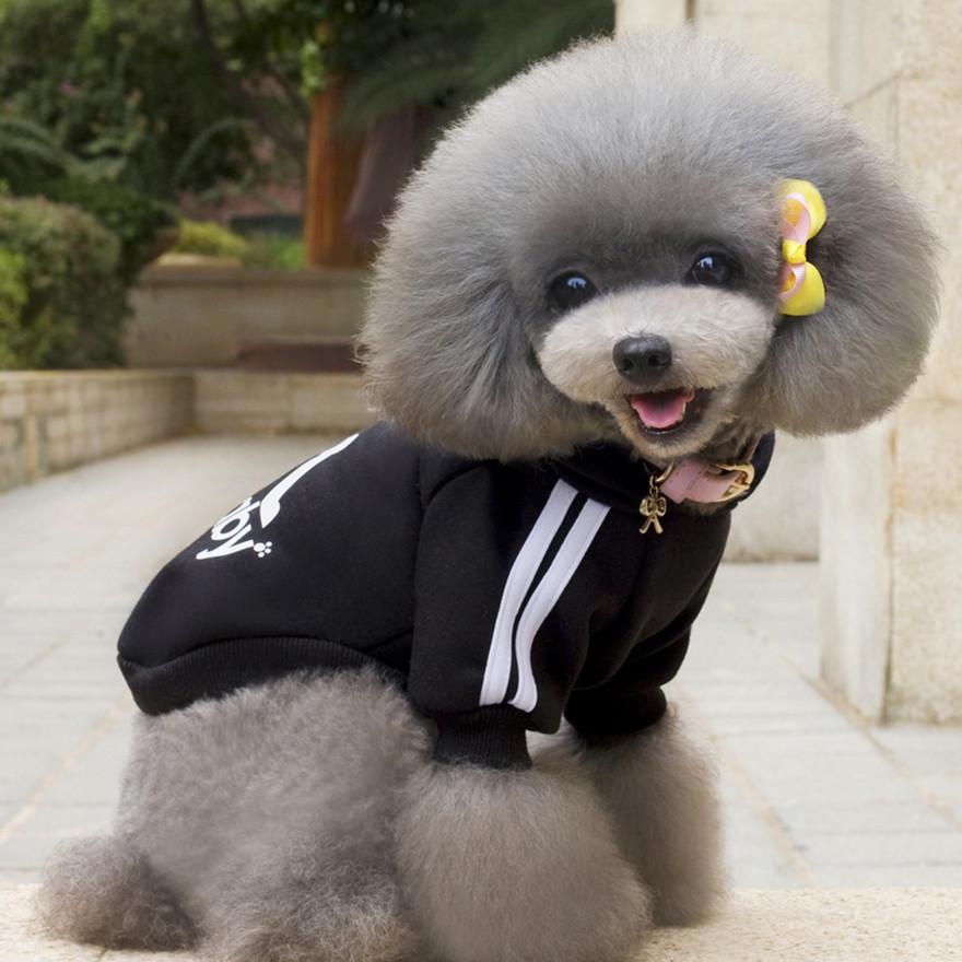blackdogbabyhoodie