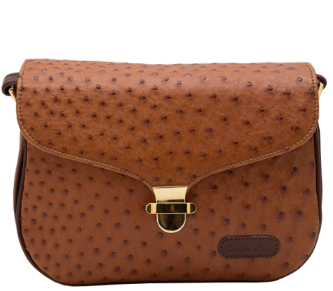 Zella Ash Boutique-Hillary Brown Cross-body Bag
