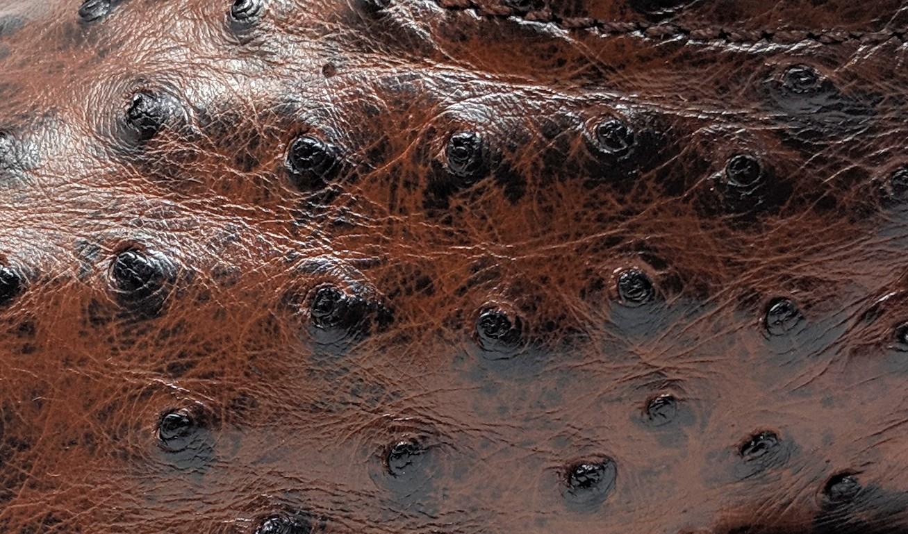 Piel de avestruz