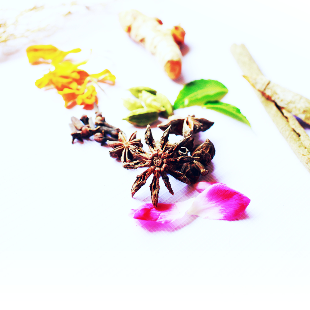 Healing Ayurveda for Skin. Anti-aging Natural Ingredients for Taila Clean Beauty