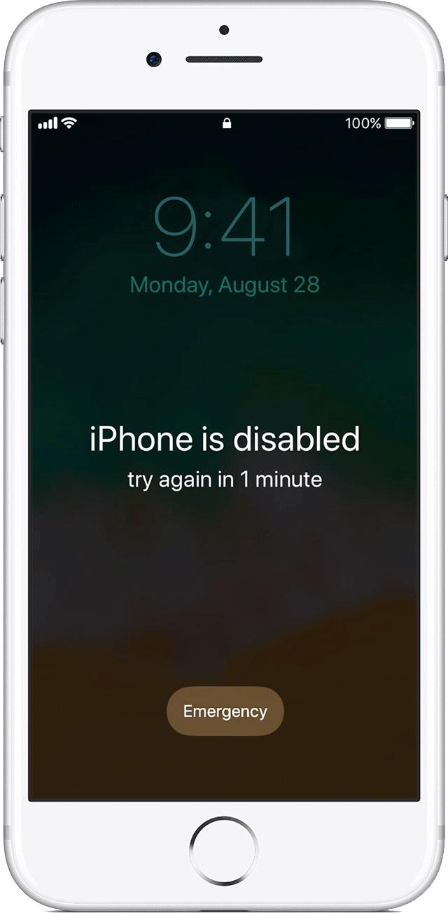 iPhone ve Samsung Kargo Tamir