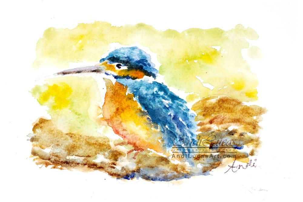 wildlife art prints
