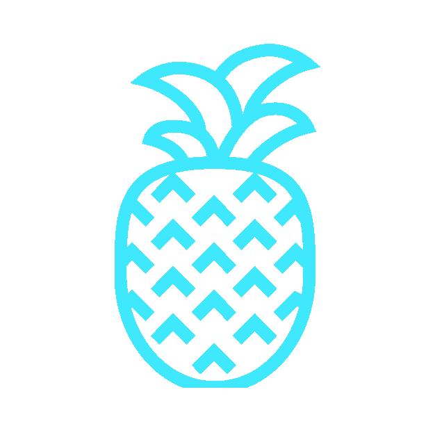 Best Luau Tours in Hawaii   Waikiki Tours and Rentals