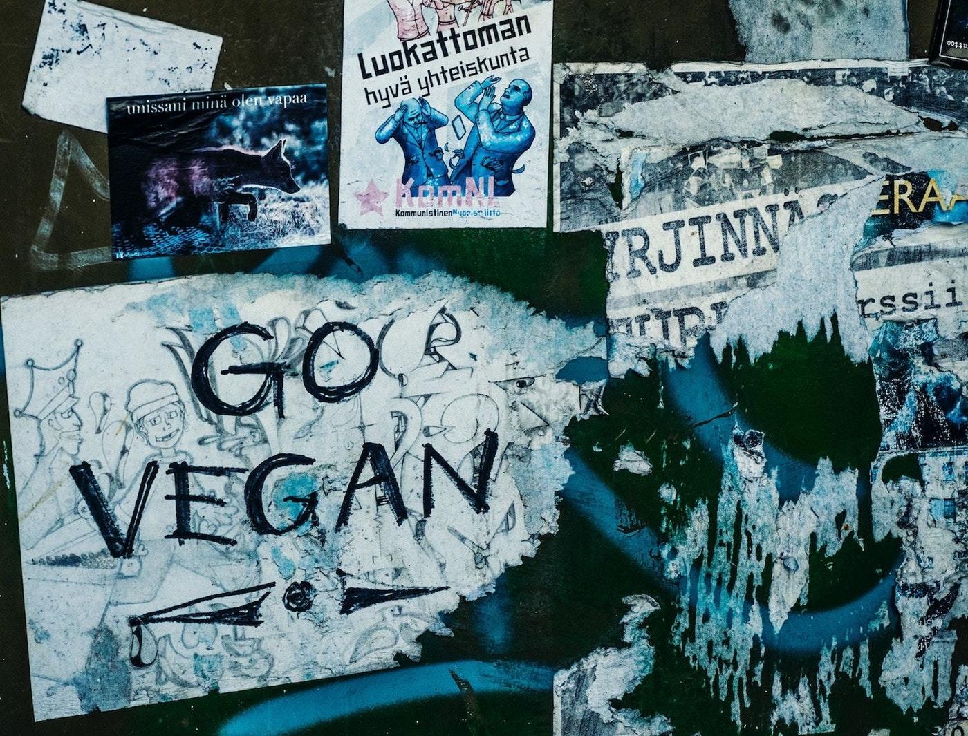 Plant Based Vegan Propoganda