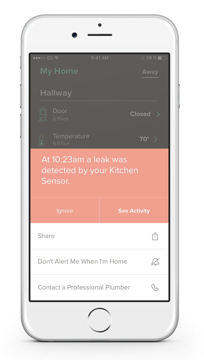 Notion App showing water leak