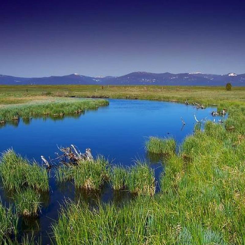 Oregon watersheds