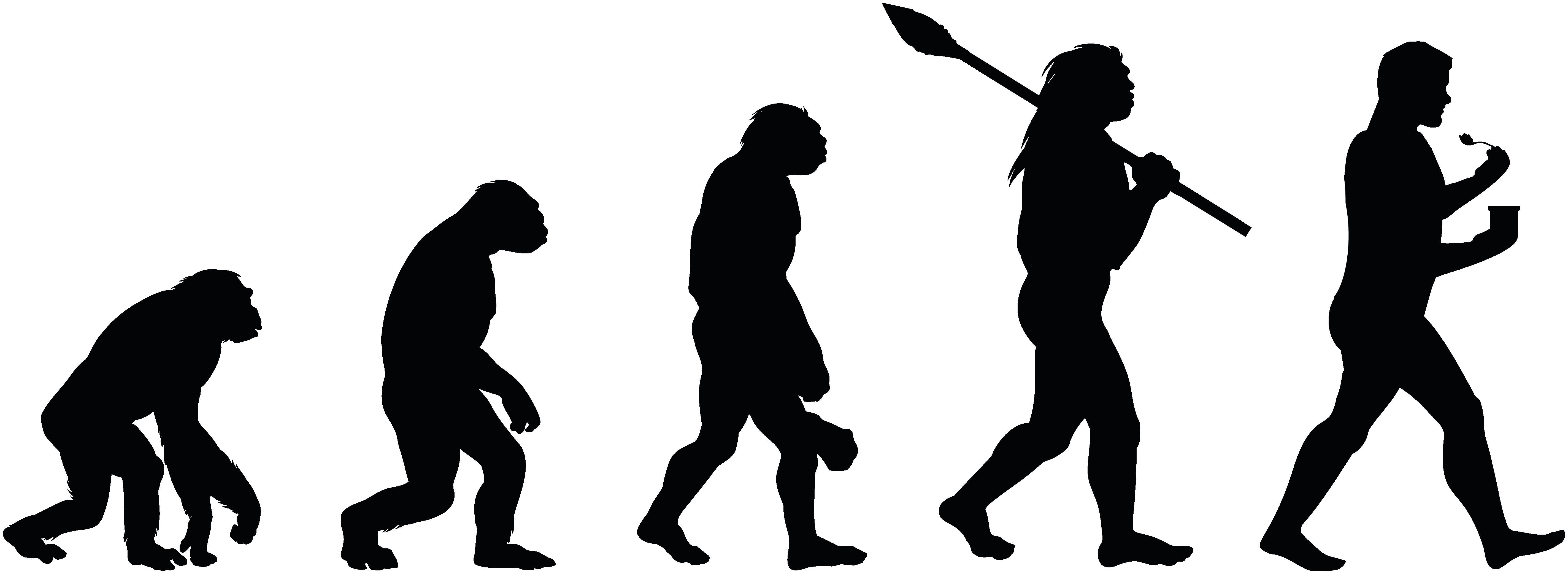 Pakery - (R)evolution