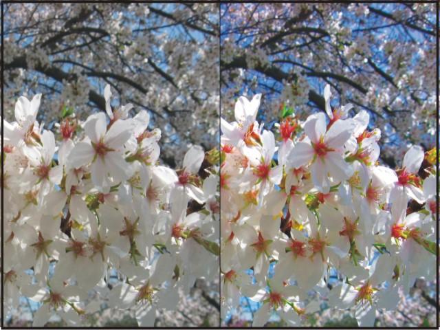 photoshop colours