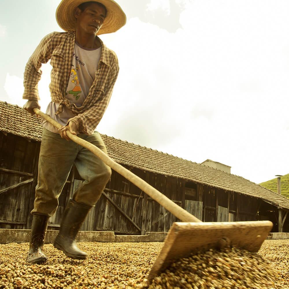 Direct Fair Trade