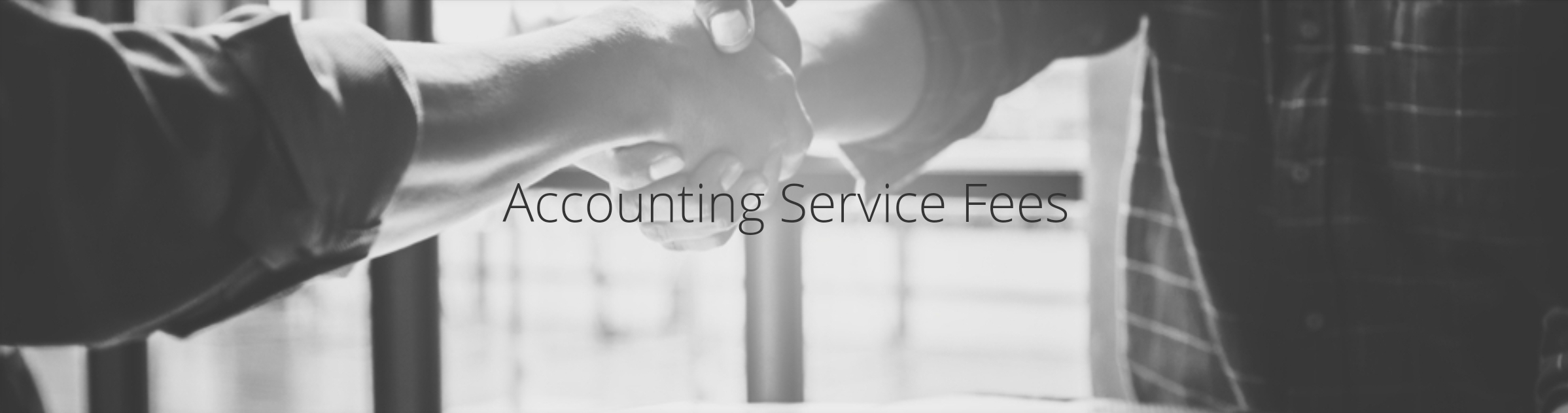 Accounting Service Fees at Annette&Co.